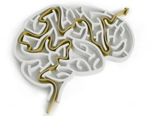 neuroplasticity dan siegel
