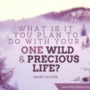What is it you plan to do with your one wild and precious life