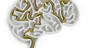 Dr. Dan Siegel on Neuroplasticity: An Excerpt from Mind